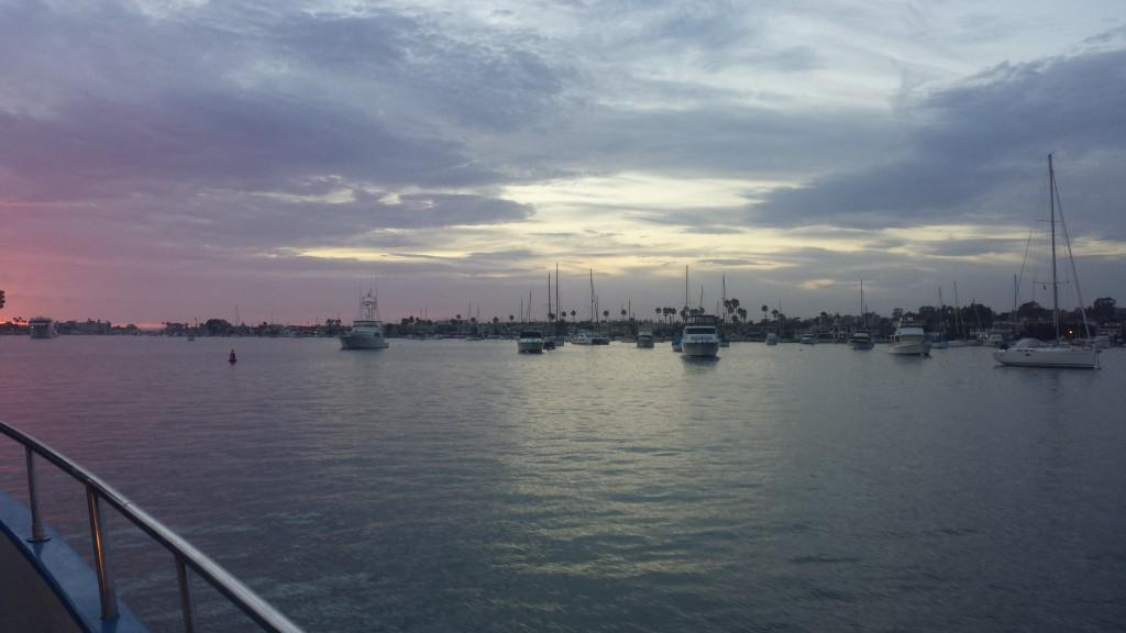 Newport <3