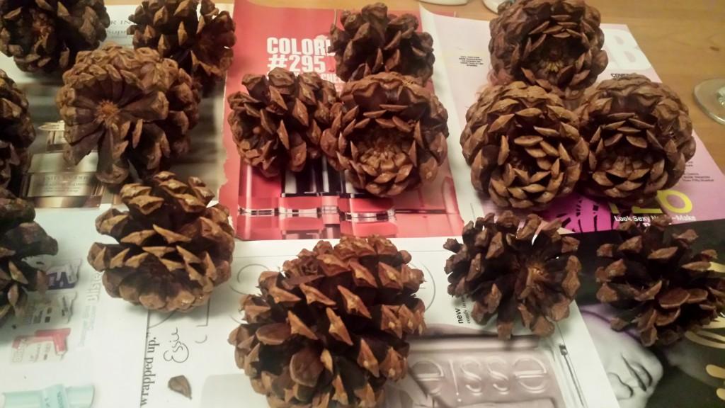 Glitter Pinecones 3