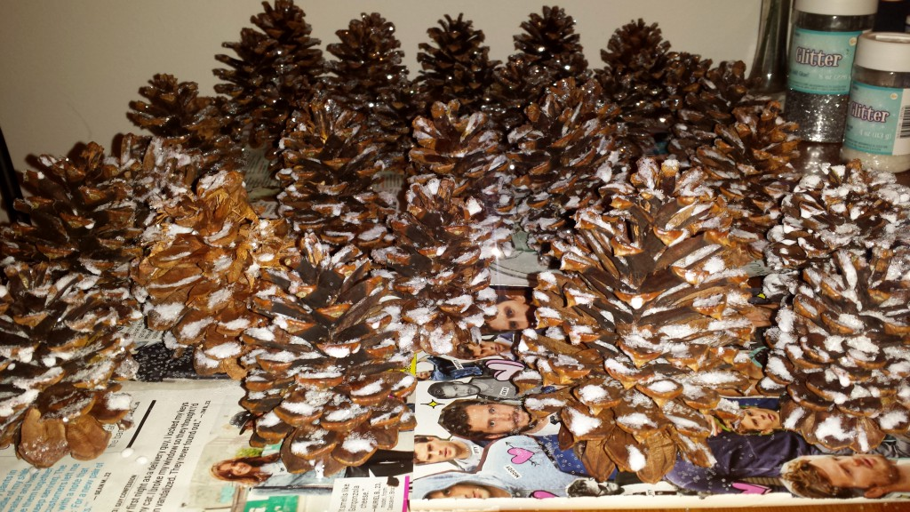 Glitter Pinecones 9